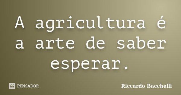 A agricultura é a arte de saber esperar.... Frase de Riccardo Bacchelli.