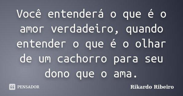 Você entenderá o que é o amor verdadeiro, quando entender o que é o olhar de um cachorro para seu dono que o ama.... Frase de Rikardo Ribeiro.