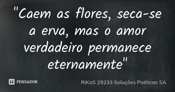 """""""Caem as flores, seca-se a erva, mas o amor verdadeiro permanece eternamente""""... Frase de RiKaS 29233 Soluções Poéticas SA."""