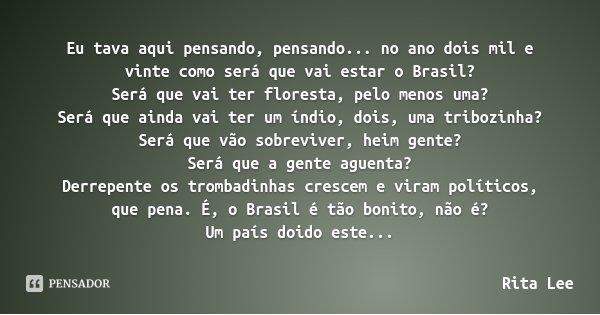 Eu tava aqui pensando, pensando... no ano dois mil e vinte como será que vai estar o Brasil? Será que vai ter floresta, pelo menos uma? Será que ainda vai ter u... Frase de Rita Lee.
