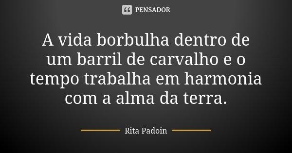 A vida borbulha dentro de um barril de carvalho e o tempo trabalha em harmonia com a alma da terra.... Frase de Rita Padoin.