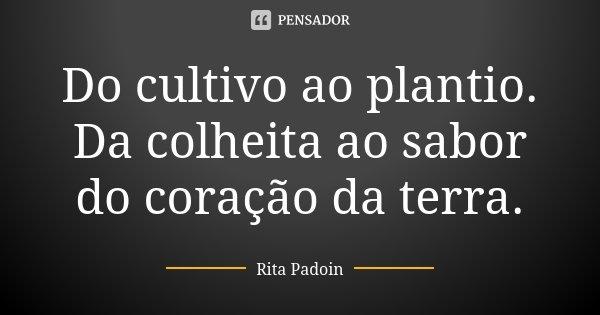 Do cultivo ao plantio. Da colheita ao sabor do coração da terra.... Frase de Rita Padoin.
