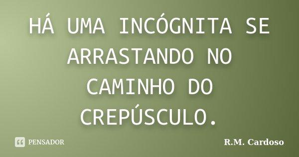 HÁ UMA INCÓGNITA SE ARRASTANDO NO CAMINHO DO CREPÚSCULO.... Frase de R.M. Cardoso.