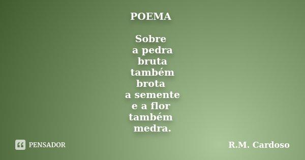 POEMA Sobre a pedra bruta também brota a semente e a flor também medra.... Frase de R.M. Cardoso.