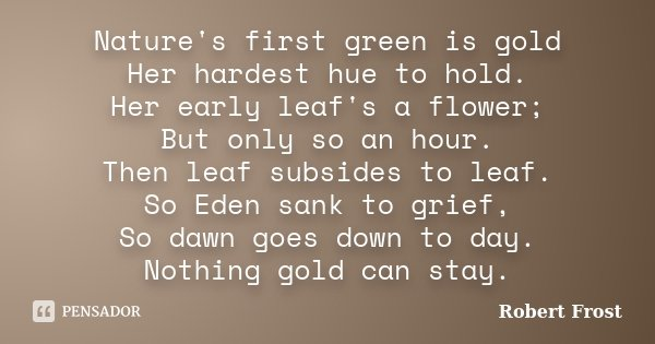 Nature's first green is gold Her hardest hue to hold. Her early leaf's a flower; But only so an hour. Then leaf subsides to leaf. So Eden sank to grief, So dawn... Frase de Robert Frost.