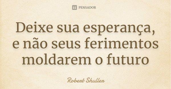 Deixe sua esperança, e não seus ferimentos moldarem o futuro... Frase de Robert Shuller.