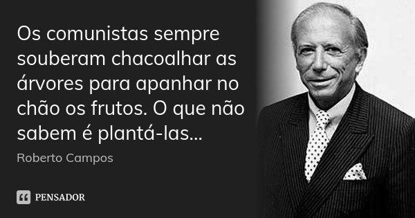 Os comunistas sempre souberam chacoalhar as árvores para apanhar no chão os frutos. O que não sabem é plantá-las...... Frase de Roberto Campos.