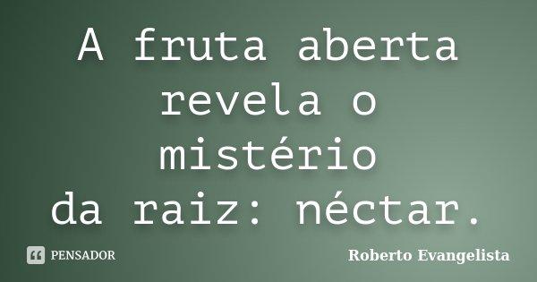 A fruta aberta revela o mistério da raiz: néctar.... Frase de Roberto Evangelista.