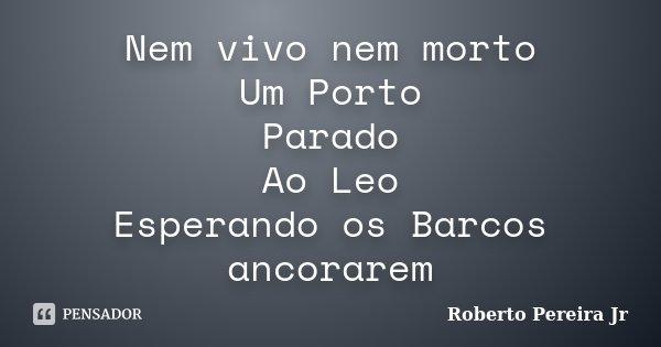 Nem vivo nem morto Um Porto Parado Ao Leo Esperando os Barcos ancorarem... Frase de Roberto Pereira Jr.