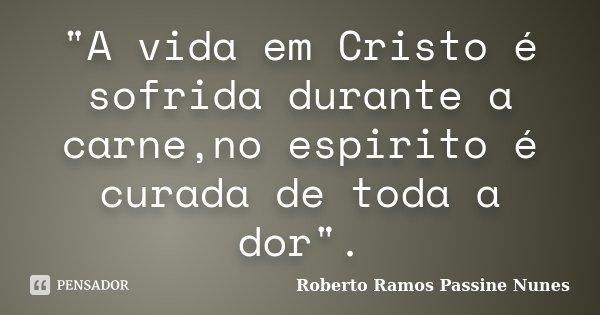 """""""A vida em Cristo é sofrida durante a carne,no espirito é curada de toda a dor"""".... Frase de Roberto Ramos Passine Nunes."""