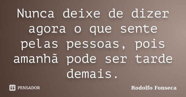 Nunca Deixe De Dizer Agora O Que Sente Rodolfo Fonseca