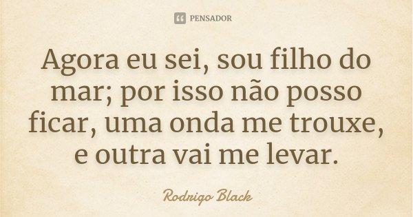 Agora eu sei, sou filho do mar; por isso não posso ficar, uma onda me trouxe, e outra vai me levar.... Frase de Rodrigo Black.