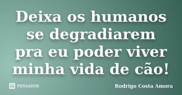 Deixa os humanos se degradiarem pra eu poder viver minha vida de cão!... Frase de Rodrigo Costa Amora.
