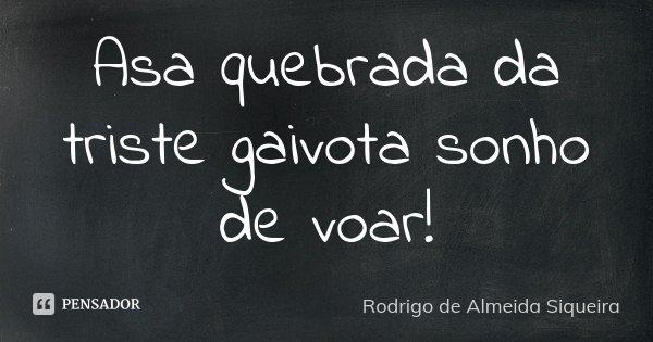 Asa quebrada da triste gaivota sonho de voar!... Frase de Rodrigo de Almeida Siqueira.