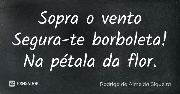 Sopra o vento Segura-te borboleta! Na pétala da flor.... Frase de Rodrigo de Almeida Siqueira.