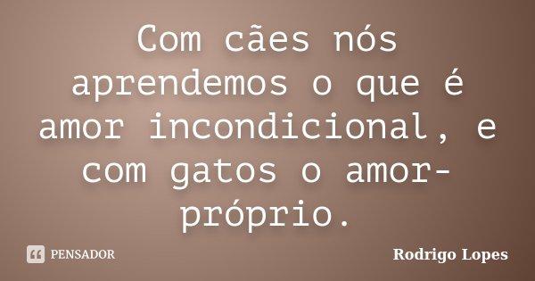 Com cães nós aprendemos o que é amor incondicional, e com gatos o amor-próprio.... Frase de Rodrigo Lopes.