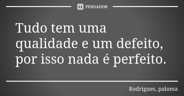 Tudo tem uma qualidade e um defeito, por isso nada é perfeito.... Frase de Rodrigues, paloma.