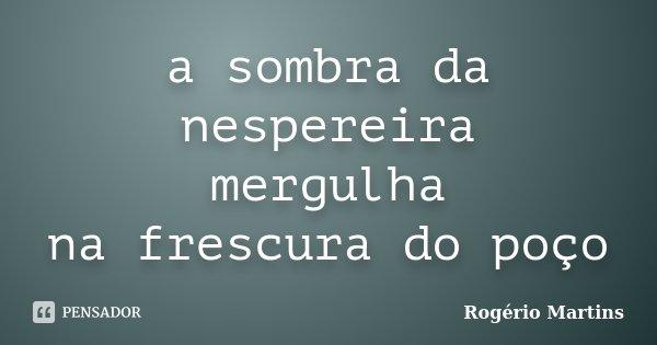 a sombra da nespereira mergulha na frescura do poço... Frase de Rogério Martins.