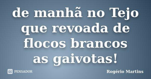 de manhã no Tejo que revoada de flocos brancos as gaivotas!... Frase de Rogério Martins.