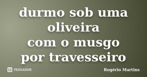 durmo sob uma oliveira com o musgo por travesseiro... Frase de Rogério Martins.