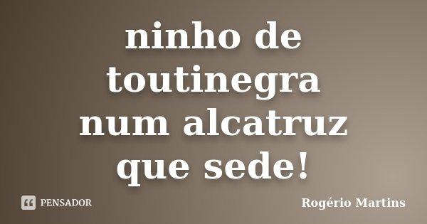 ninho de toutinegra num alcatruz que sede!... Frase de Rogério Martins.