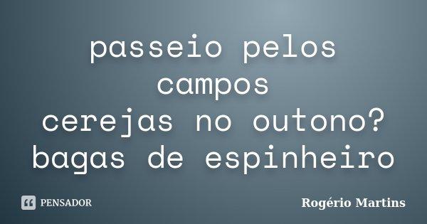 passeio pelos campos cerejas no outono? bagas de espinheiro... Frase de Rogério Martins.