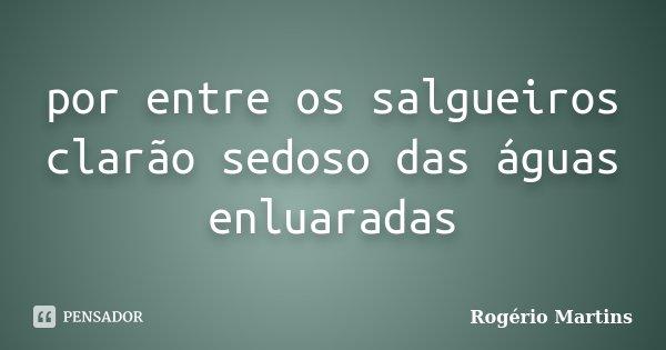 por entre os salgueiros clarão sedoso das águas enluaradas... Frase de Rogério Martins.