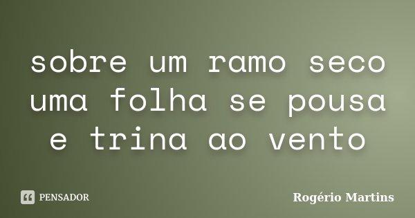 sobre um ramo seco uma folha se pousa e trina ao vento... Frase de Rogério Martins.