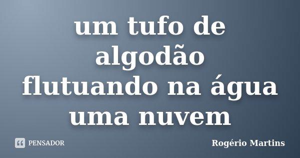 um tufo de algodão flutuando na água uma nuvem... Frase de Rogério Martins.