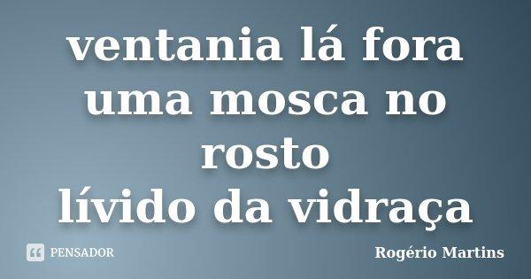 ventania lá fora uma mosca no rosto lívido da vidraça... Frase de Rogério Martins.