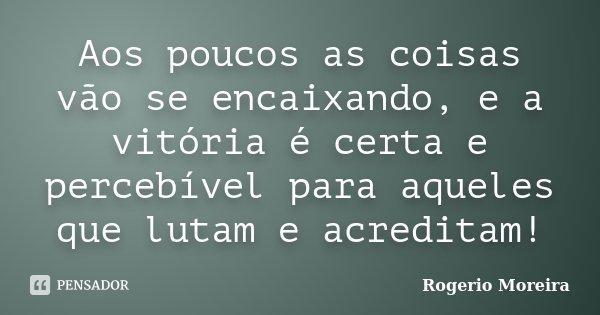 Aos poucos as coisas vão se encaixando, e a vitória é certa e percebível para aqueles que lutam e acreditam!... Frase de Rogerio Moreira.