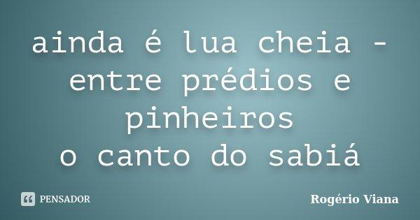 ainda é lua cheia - entre prédios e pinheiros o canto do sabiá... Frase de Rogério Viana.