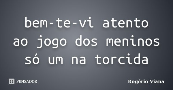 bem-te-vi atento ao jogo dos meninos só um na torcida... Frase de Rogério Viana.