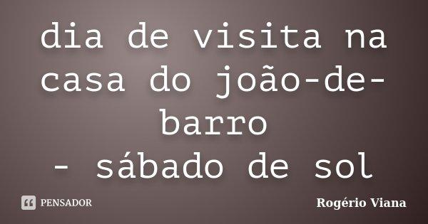 dia de visita na casa do joão-de-barro - sábado de sol... Frase de Rogério Viana.