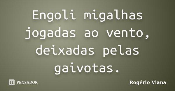 Engoli migalhas jogadas ao vento, deixadas pelas gaivotas.... Frase de Rogério Viana.