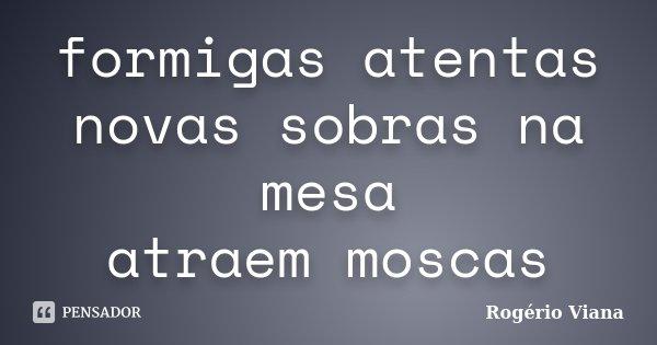 formigas atentas novas sobras na mesa atraem moscas... Frase de Rogério Viana.