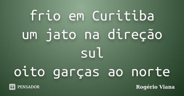 frio em Curitiba um jato na direção sul oito garças ao norte... Frase de Rogério Viana.