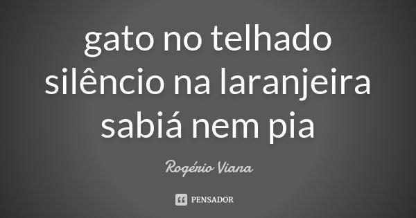 gato no telhado silêncio na laranjeira sabiá nem pia... Frase de Rogério Viana.