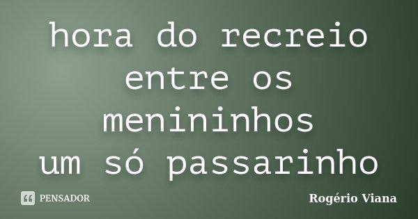 hora do recreio entre os menininhos um só passarinho... Frase de Rogério Viana.