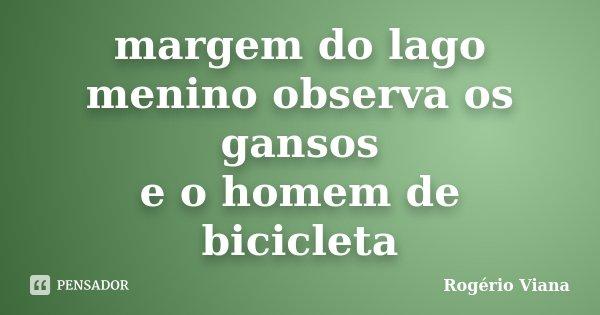 margem do lago menino observa os gansos e o homem de bicicleta... Frase de Rogério Viana.