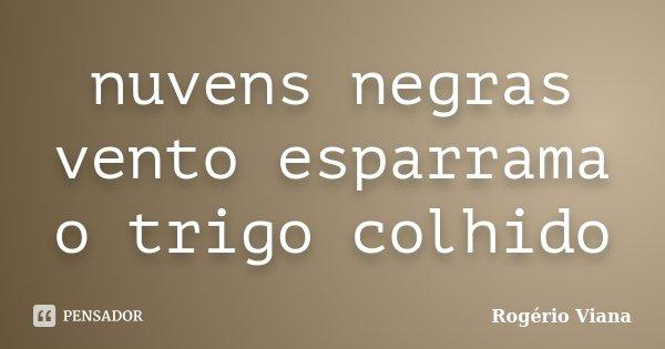 nuvens negras vento esparrama o trigo colhido... Frase de Rogério Viana.