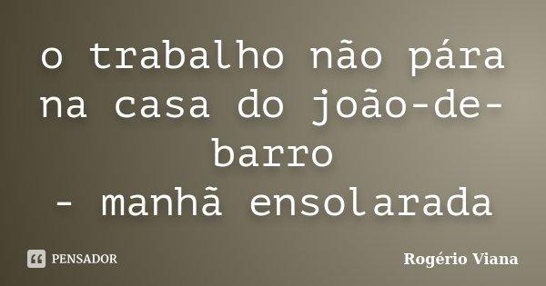 o trabalho não pára na casa do joão-de-barro - manhã ensolarada... Frase de Rogério Viana.