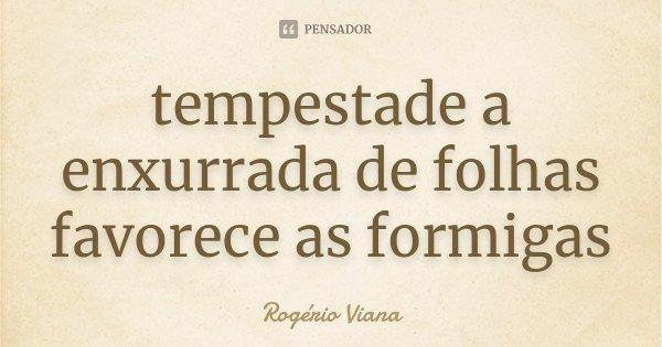 tempestade a enxurrada de folhas favorece as formigas... Frase de Rogério Viana.