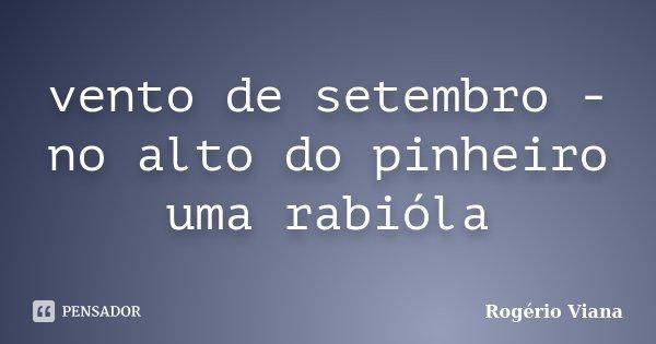 vento de setembro - no alto do pinheiro uma rabióla... Frase de Rogério Viana.