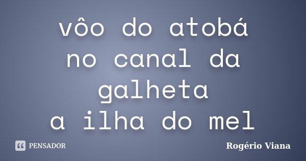 vôo do atobá no canal da galheta a ilha do mel... Frase de Rogério Viana.