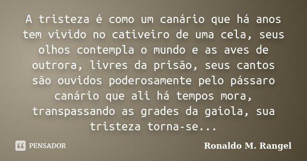 A tristeza é como um canário que há anos tem vivido no cativeiro de uma cela, seus olhos contempla o mundo e as aves de outrora, livres da prisão, seus cantos s... Frase de Ronaldo M. Rangel.