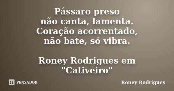 """Pássaro preso não canta, lamenta. Coração acorrentado, não bate, só vibra. Roney Rodrigues em """"Cativeiro""""... Frase de Roney Rodrigues."""