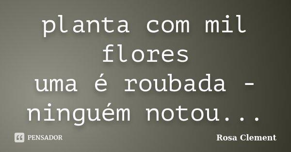 planta com mil flores uma é roubada - ninguém notou...... Frase de Rosa Clement.
