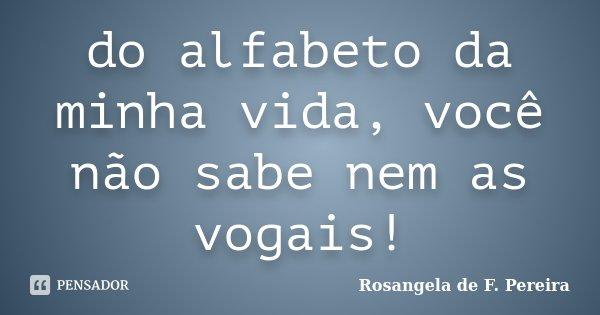 do alfabeto da minha vida, você não sabe nem as vogais!... Frase de Rosangela de F. Pereira.