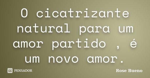 O cicatrizante natural para um amor partido , é um novo amor.... Frase de Rose Bueno.